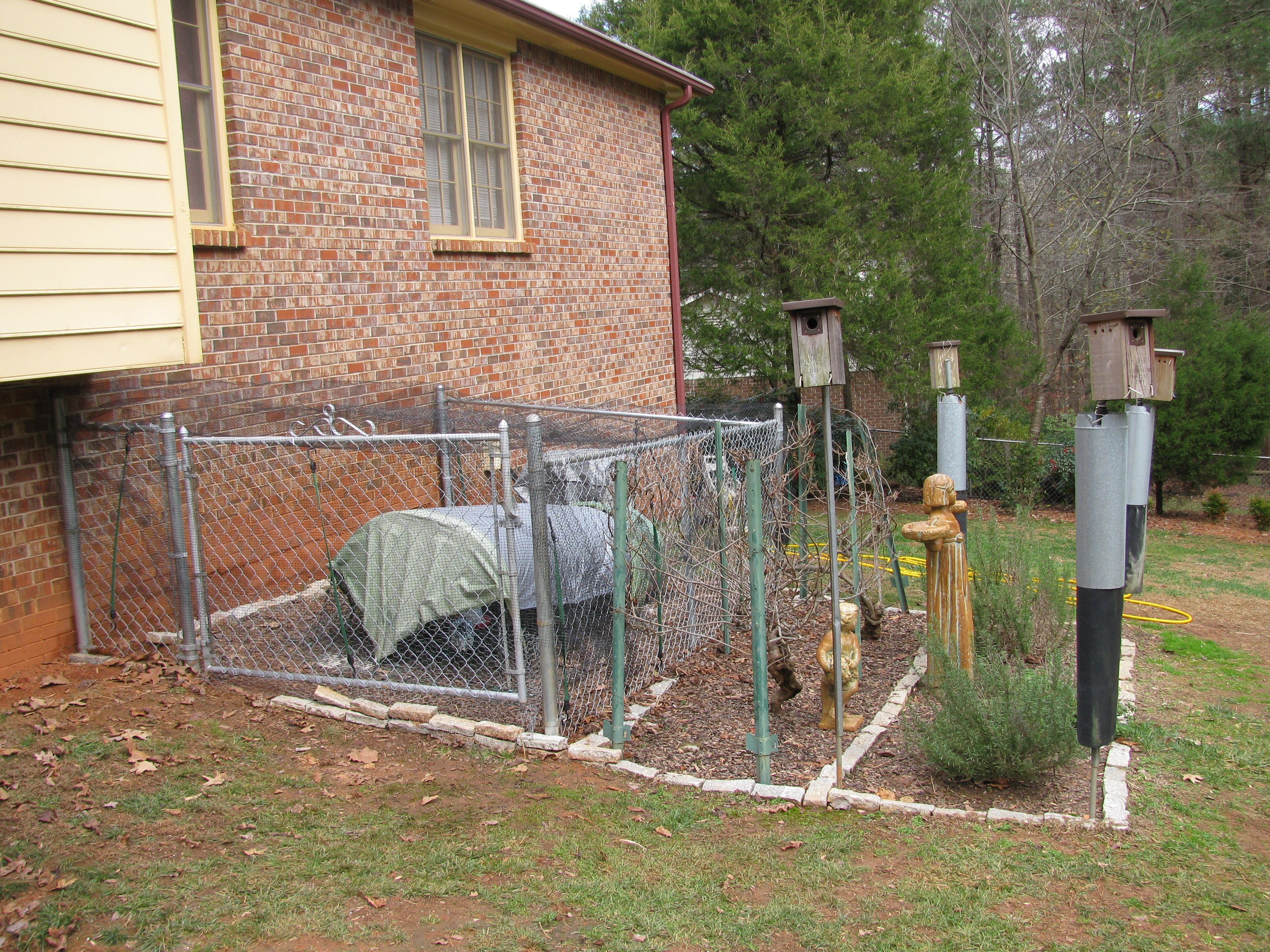 Greenville Sc Post Card Blog Chicken Coop Chain Link